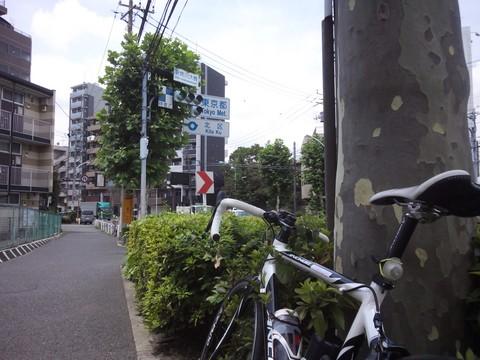 NCM_0060.JPG